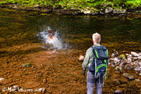 Ystradfellte, 4 Waterfalls Walk, Brecon Beacons, Wales, May 2014-81